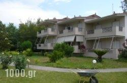 Elia Apartments in Edipsos, Evia, Central Greece