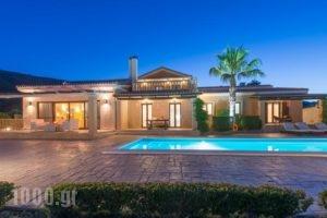 Palm Luxury Villa_accommodation_in_Villa_Ionian Islands_Zakinthos_Laganas