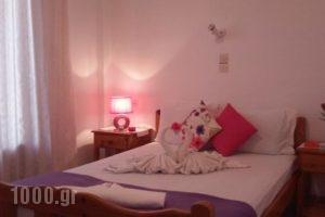 Massouri Rooms_best deals_Room_Dodekanessos Islands_Kalimnos_Kalimnos Rest Areas