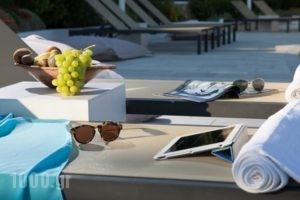 El Mar Estate & Villas_holidays_in_Villa_Cyclades Islands_Mykonos_Mykonos ora