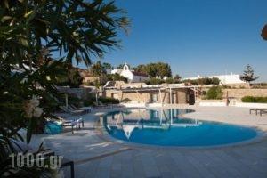El Mar Estate & Villas_best prices_in_Villa_Cyclades Islands_Mykonos_Mykonos ora