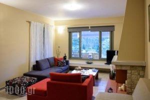 Villa Konari_lowest prices_in_Villa_Peloponesse_Argolida_Tolo