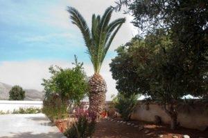 Villa Xenia_lowest prices_in_Villa_Crete_Lasithi_Ierapetra
