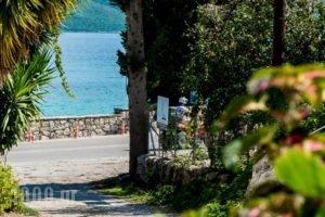 Nikoleta Studios_best deals_Hotel_Ionian Islands_Lefkada_Lefkada Chora