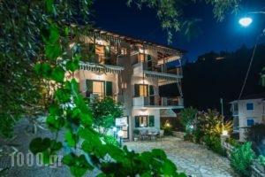 Nikoleta Studios_lowest prices_in_Hotel_Ionian Islands_Lefkada_Lefkada Chora