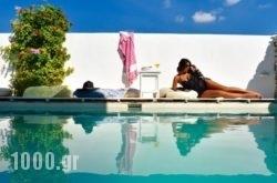 Aphrodite Boutique Hotel in Alyki, Paros, Cyclades Islands