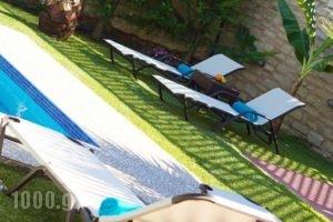 Cretan Residence Villa Dimitrios & Eva_lowest prices_in_Villa_Crete_Rethymnon_Mylopotamos
