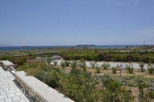 Golden Sea Villas_best prices_in_Villa_Cyclades Islands_Paros_Chrysi Akti
