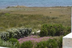 Golden Sea Villas_lowest prices_in_Villa_Cyclades Islands_Paros_Chrysi Akti
