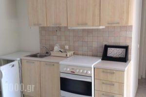 Serendipity Apartments_holidays_in_Apartment_Peloponesse_Argolida_Nafplio