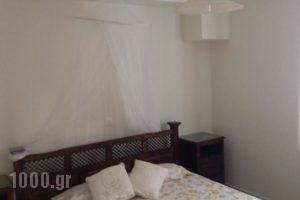 Serendipity Apartments_best deals_Apartment_Peloponesse_Argolida_Nafplio