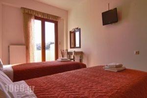 Apartments Petrochori Villas_travel_packages_in_Crete_Rethymnon_Plakias