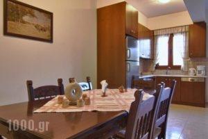 Apartments Petrochori Villas_holidays_in_Villa_Crete_Rethymnon_Plakias