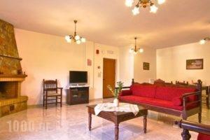 Apartments Petrochori Villas_best deals_Villa_Crete_Rethymnon_Plakias