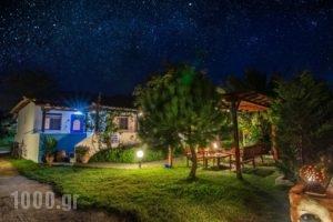 Sikia Blue Rooms_accommodation_in_Room_Macedonia_Halkidiki_Haniotis - Chaniotis