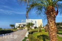 Villa Mary Scaraveo in Ialysos, Rhodes, Dodekanessos Islands