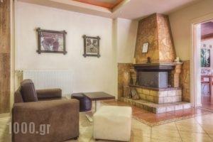 Tselikas Hotel_travel_packages_in_Macedonia_Kozani_Kozani City