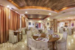 Tselikas Hotel_best deals_Hotel_Macedonia_Kozani_Kozani City