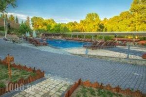 Tselikas Hotel_lowest prices_in_Hotel_Macedonia_Kozani_Kozani City