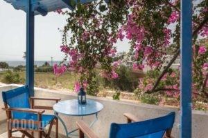 Firoa Studios_holidays_in_Hotel_Cyclades Islands_Donousa_Donousa Chora