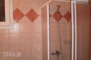 Hotel Stella_accommodation_in_Hotel_Thessaly_Magnesia_Chania