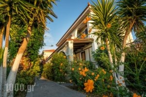 Tota Studios_best deals_Hotel_Ionian Islands_Zakinthos_Zakinthos Rest Areas