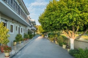 Tota Studios_travel_packages_in_Ionian Islands_Zakinthos_Zakinthos Rest Areas
