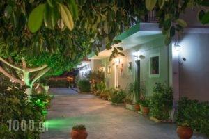 Tota Studios_lowest prices_in_Hotel_Ionian Islands_Zakinthos_Zakinthos Rest Areas