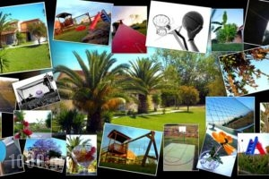 Demis Apartments_accommodation_in_Apartment_Ionian Islands_Corfu_Corfu Rest Areas