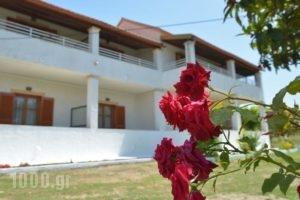 Mary Joan_holidays_in_Hotel_Ionian Islands_Corfu_Corfu Rest Areas