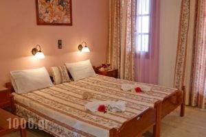 Golden Beach Studios_best prices_in_Hotel_Cyclades Islands_Naxos_Naxos chora