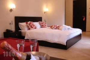 Meteoritis_lowest prices_in_Hotel_Thessaly_Trikala_Kastraki