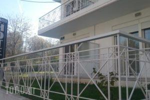 Iokasof Rooms_travel_packages_in_Epirus_Ioannina_Ioannina City