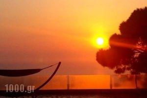 San Marino Suites_accommodation_in_Hotel_Cyclades Islands_Sandorini_Sandorini Chora
