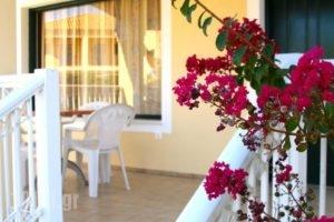 Mediterranean Blue_best deals_Hotel_Ionian Islands_Corfu_Lefkimi