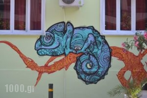 Chameleon Youth Hostel_travel_packages_in_Central Greece_Attica_Nikaia