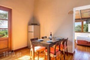 Villa Palma_lowest prices_in_Villa_Crete_Chania_Platanias