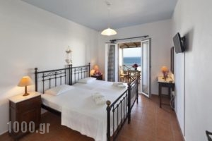Reggina'S Apartments_holidays_in_Apartment_Cyclades Islands_Syros_Syros Rest Areas