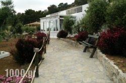 Villa Artemis in Ierapetra, Lasithi, Crete