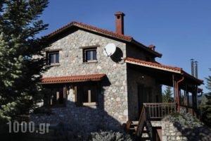 Mont Valley Boutique Chalets_best deals_Hotel_Central Greece_Fokida_Delfi