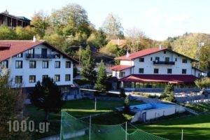 Naoussa Mountain Resort_accommodation_in_Hotel_Macedonia_Imathia_Naousa