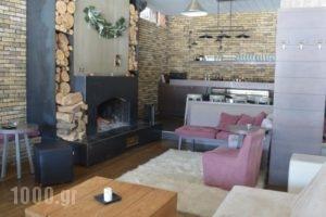 Naoussa Mountain Resort_best prices_in_Hotel_Macedonia_Imathia_Naousa