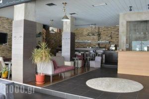 Naoussa Mountain Resort_lowest prices_in_Hotel_Macedonia_Imathia_Naousa