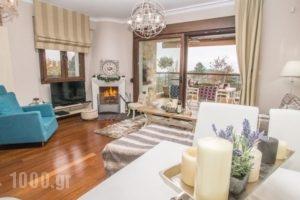 Evmorfes Villas_lowest prices_in_Villa_Macedonia_Halkidiki_Poligyros