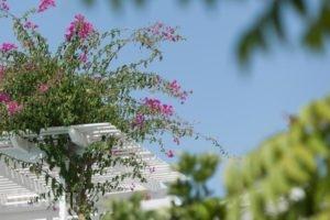 Casa Bianca_best deals_Hotel_Cyclades Islands_Sandorini_Imerovigli