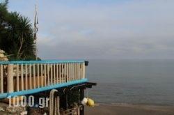 Porta Del Mar Beach Resort in Zakinthos Rest Areas, Zakinthos, Ionian Islands