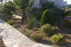 Michelakis Apartments in Sitia, Lasithi, Crete
