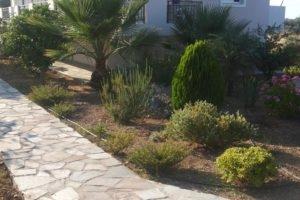 Michelakis Apartments_accommodation_in_Apartment_Crete_Lasithi_Sitia