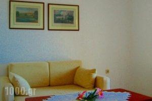 Spiros Studios_accommodation_in_Hotel_Epirus_Preveza_Parga