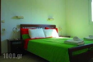 Spiros Studios_holidays_in_Hotel_Epirus_Preveza_Parga